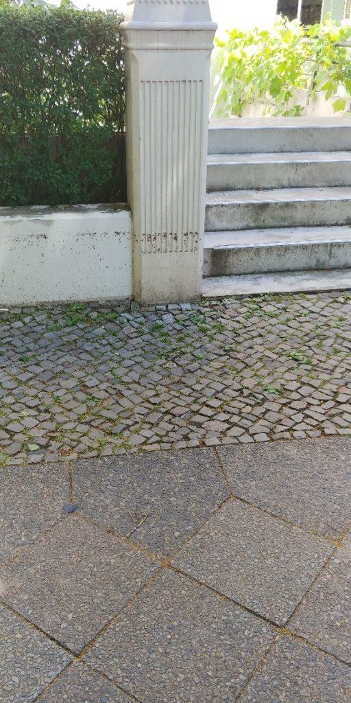 Mauer mit Überflutungsmarker (Lindenblüten)